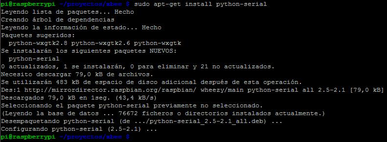 raspberrypi_python-serial